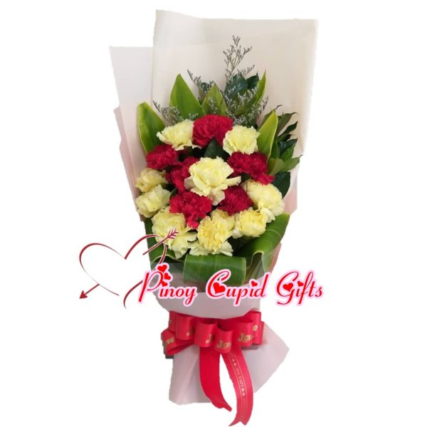 Mixed Red and White Carnations Bouquet