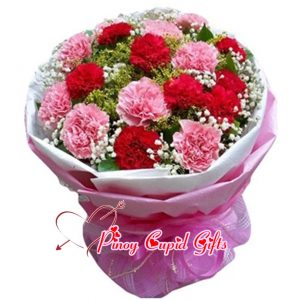 2 Bunches Mixed Pink/Red Carnations Bouquet