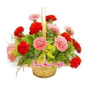 Mixed Red and Pink Carnations