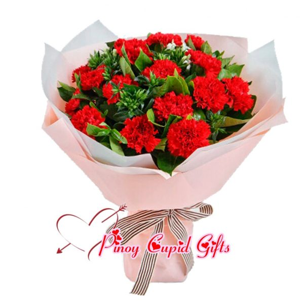 2 Bunches Red Carnations Bouquet