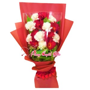 Mixed Red/White Carnations Bouquet