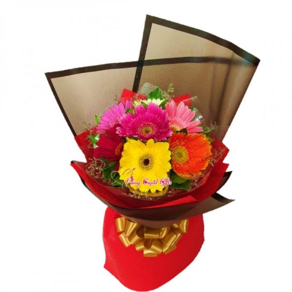 Mixed Gerberas in a Hand Bouquet