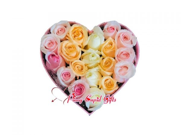 20 Mixed Imported Roses in a Heart Box
