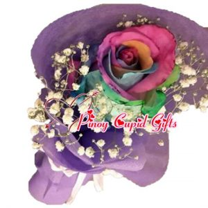 1 Imported Rainbow Holland Rose in a hand bouquet